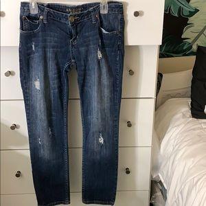 Arizona Jean Co Favorite Skinny Jeans